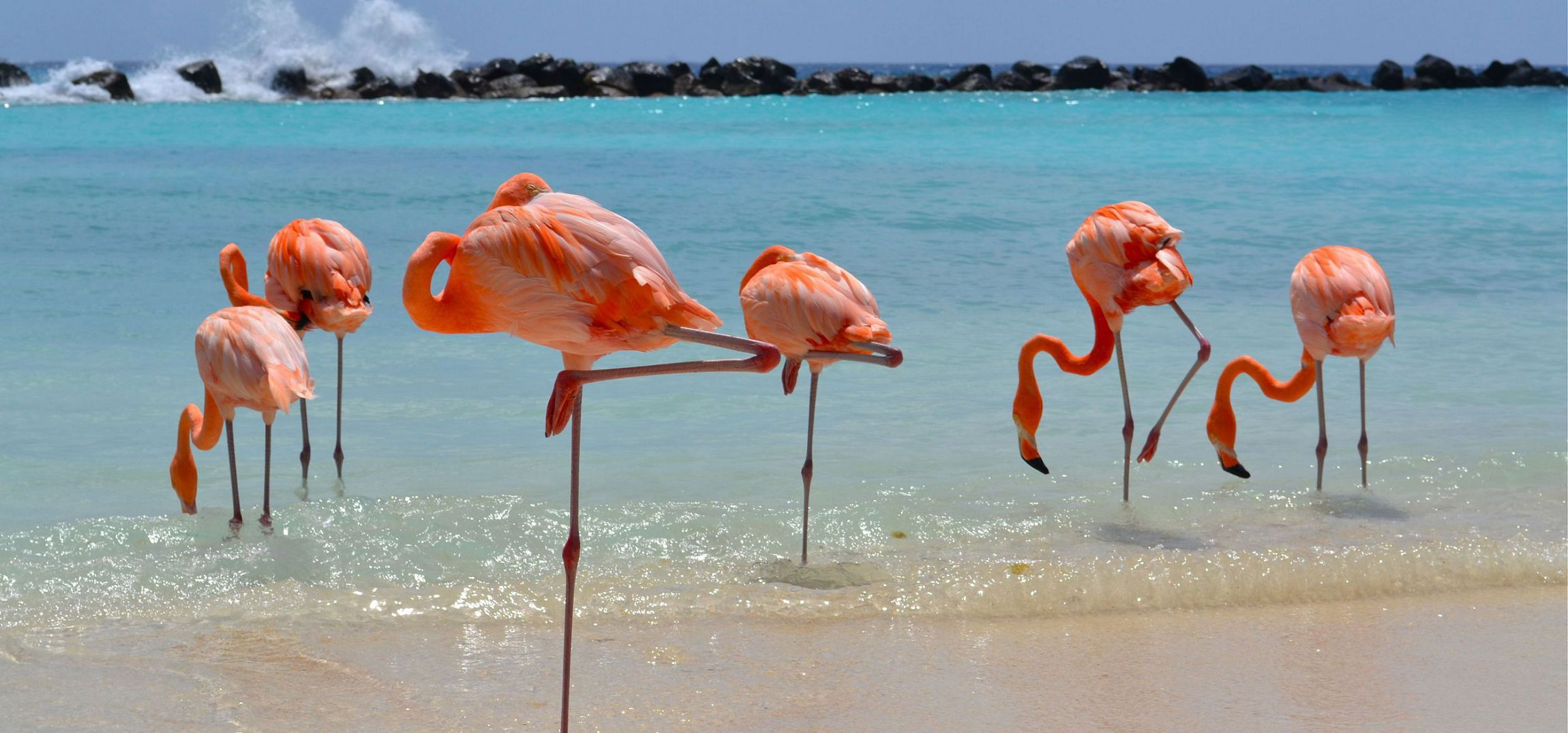 Aruba Wallpapers HD