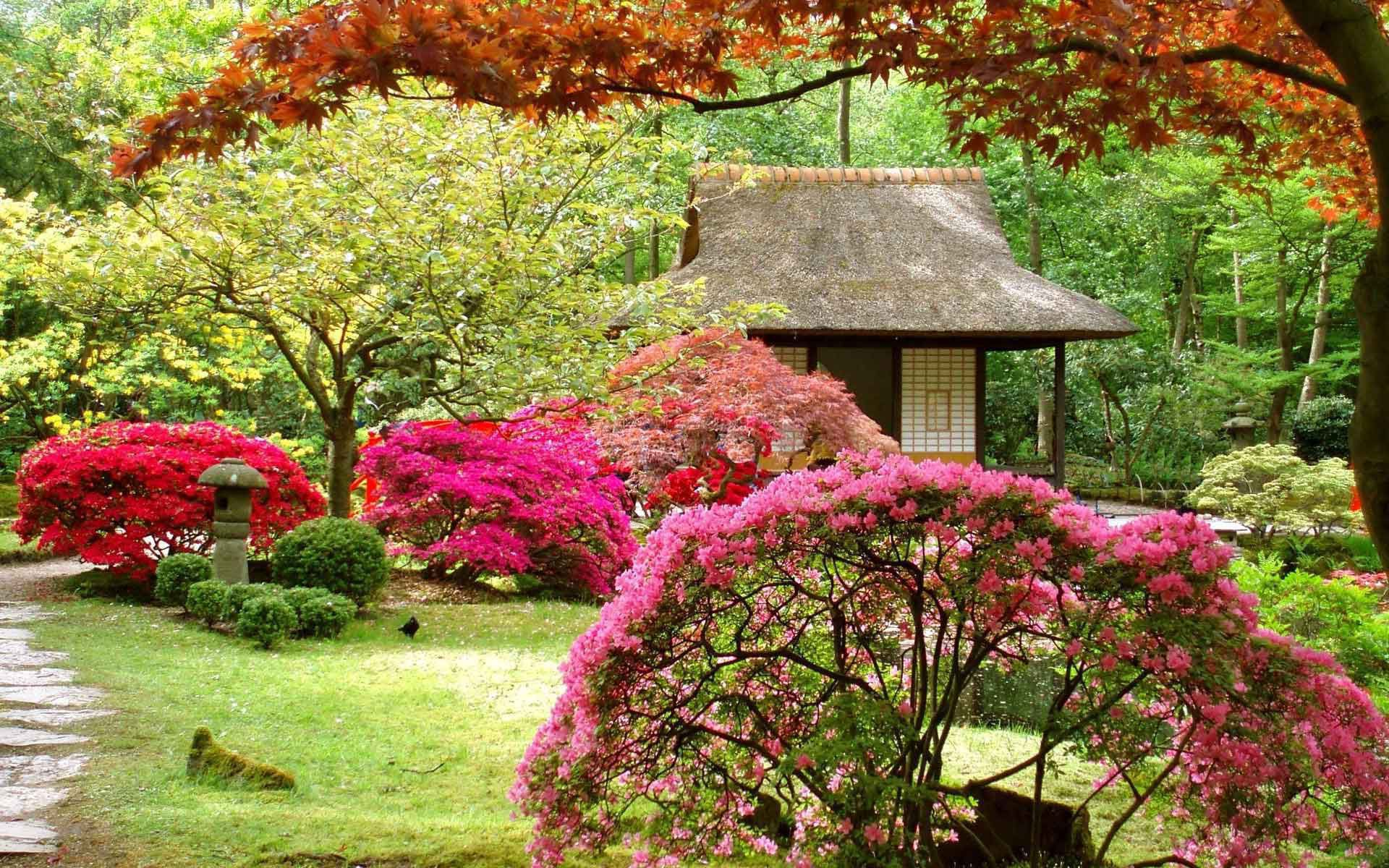 Asian Garden Computer Wallpaper