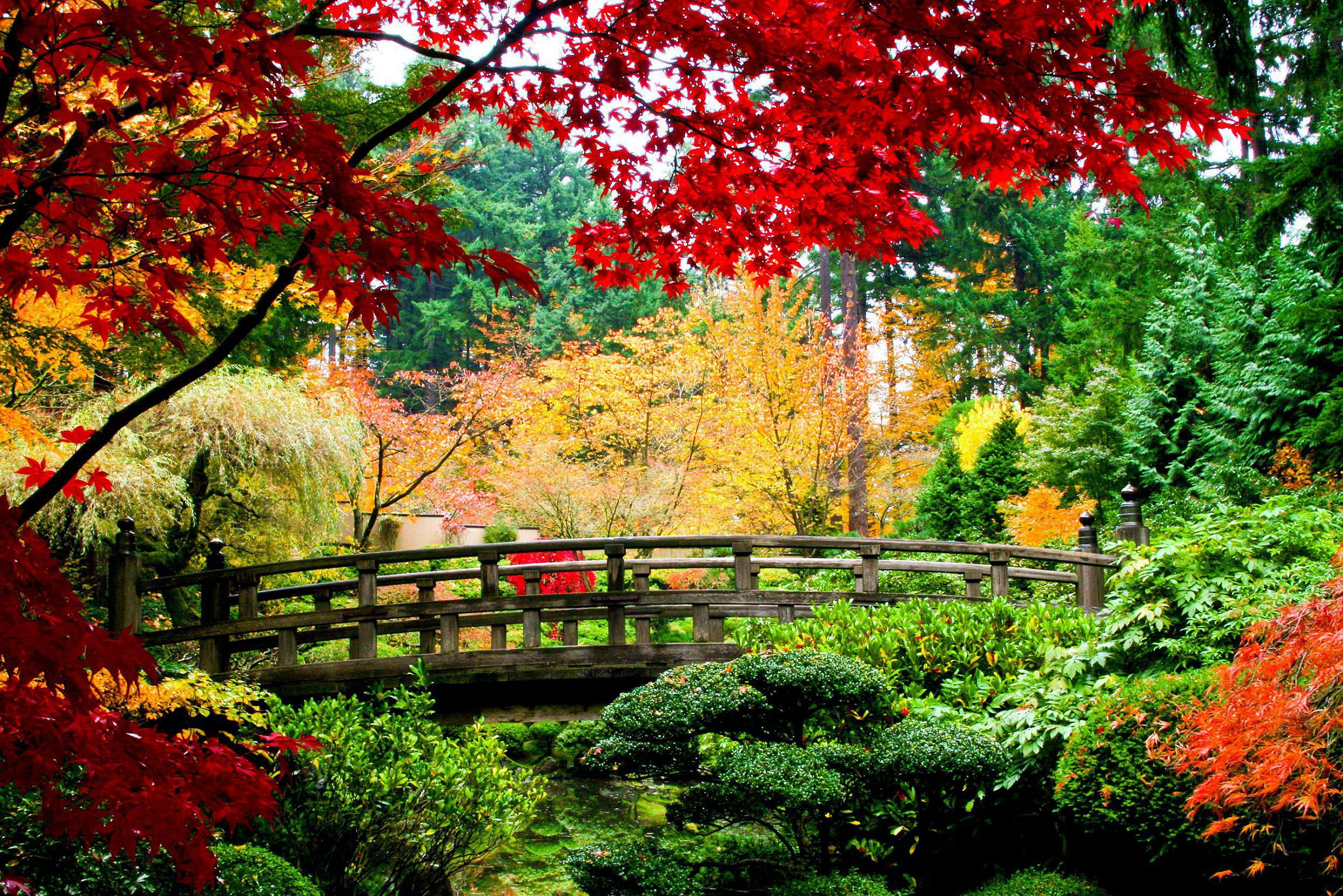 Asian Garden Wallpapers HD