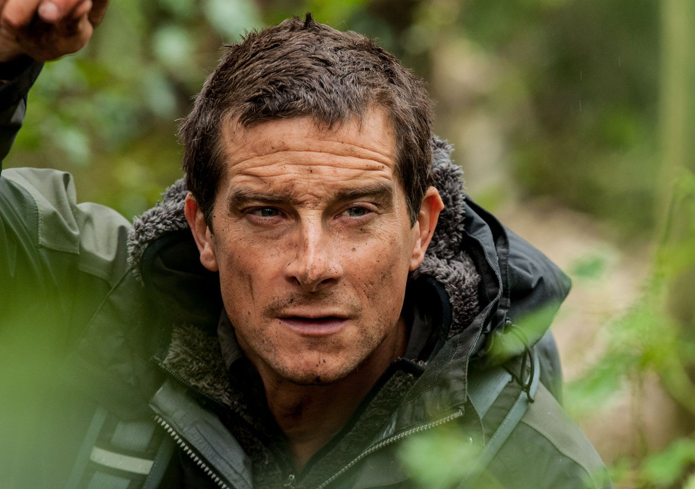 Bear Grylls Gallery
