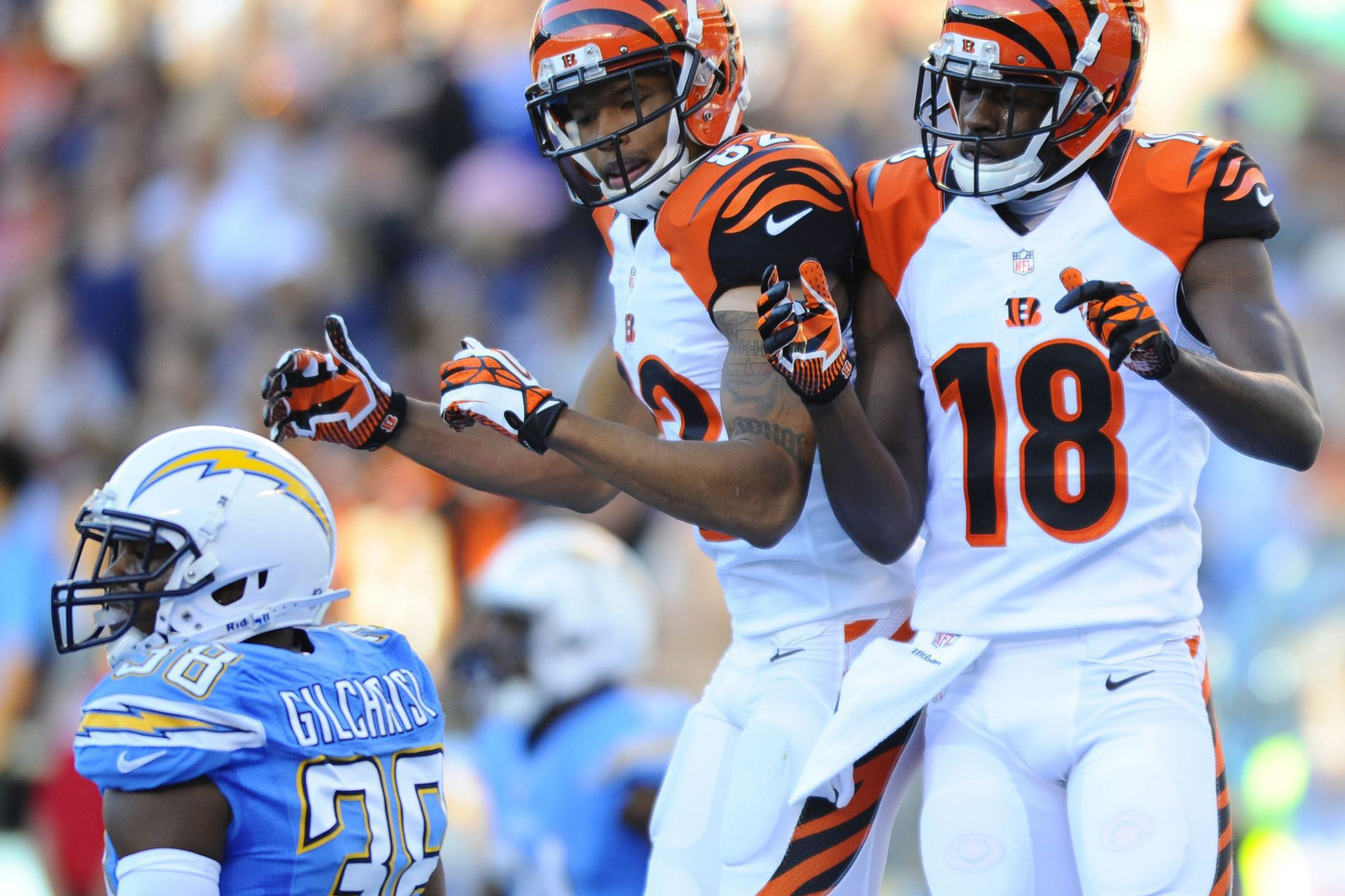 Bengals High Definition Wallpapers