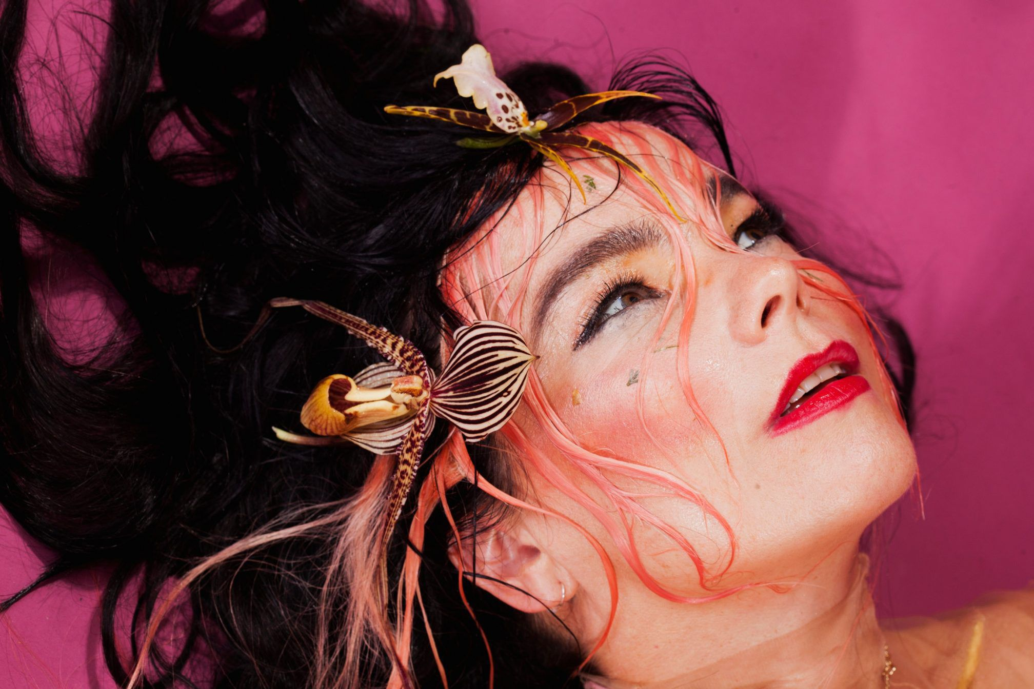 Bjork HD Background