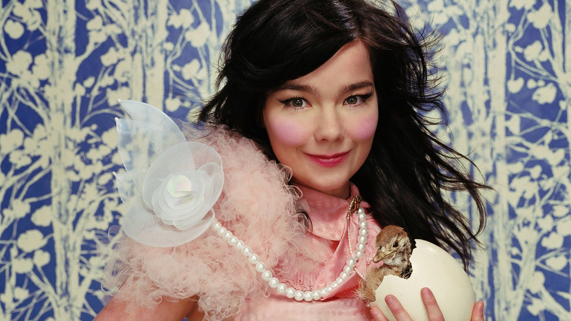 Bjork High Definition Wallpapers