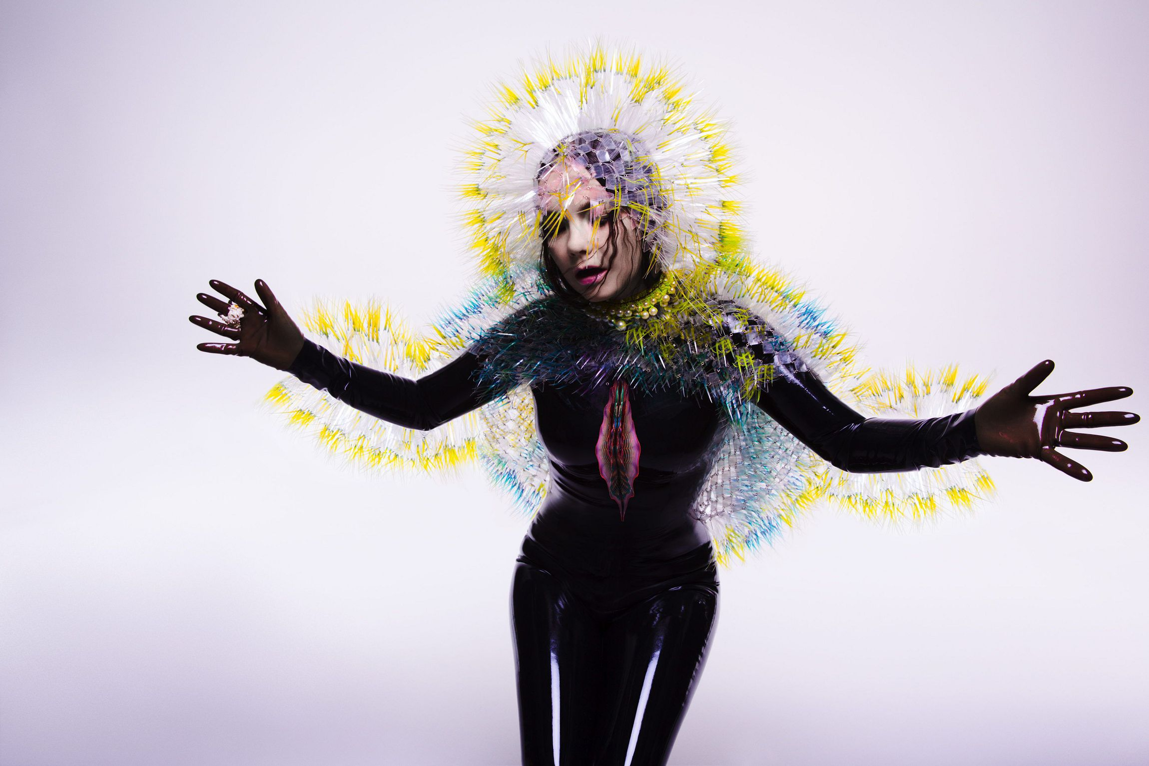 Bjork In High Resolution