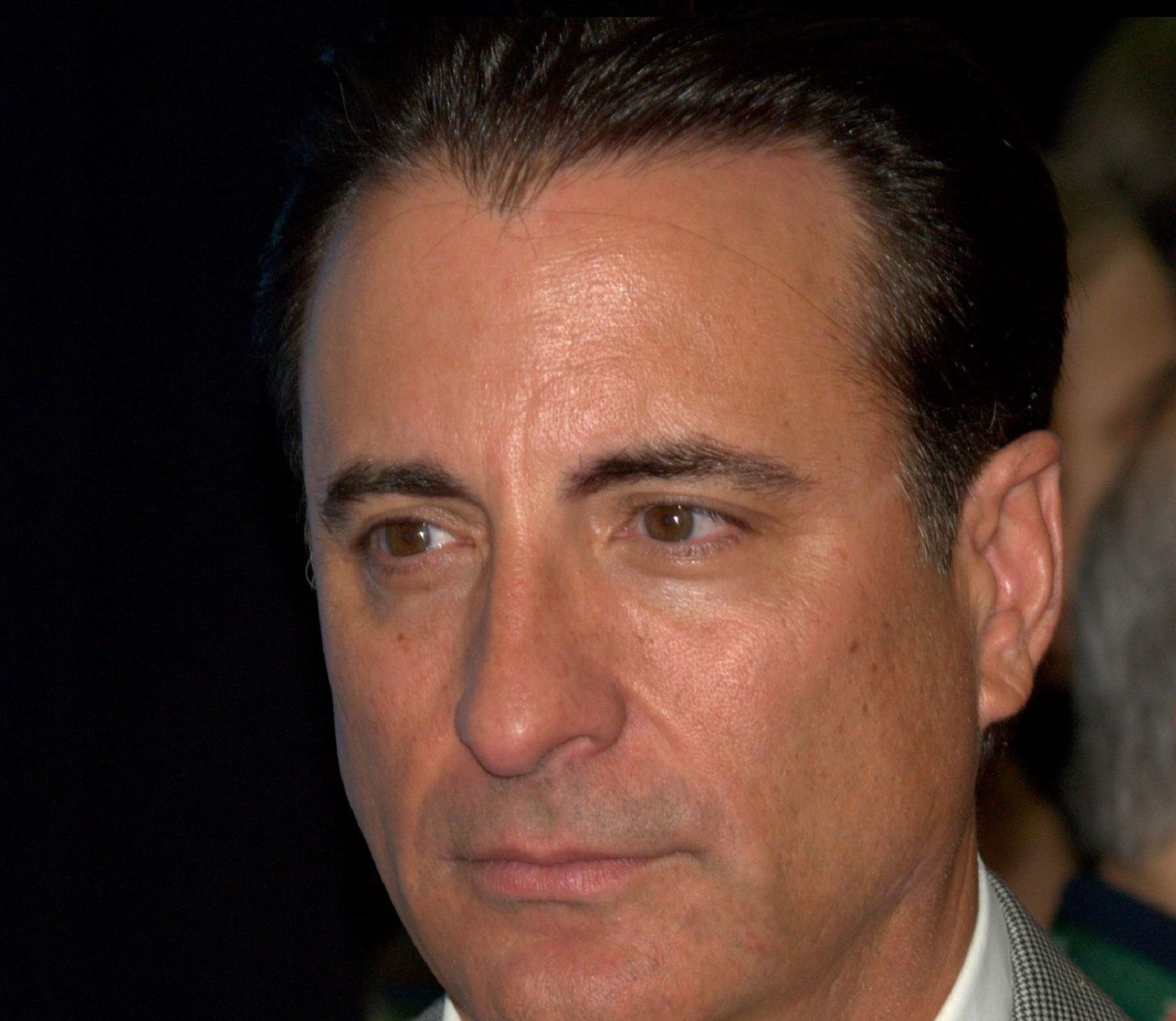 Andy Garcia Images